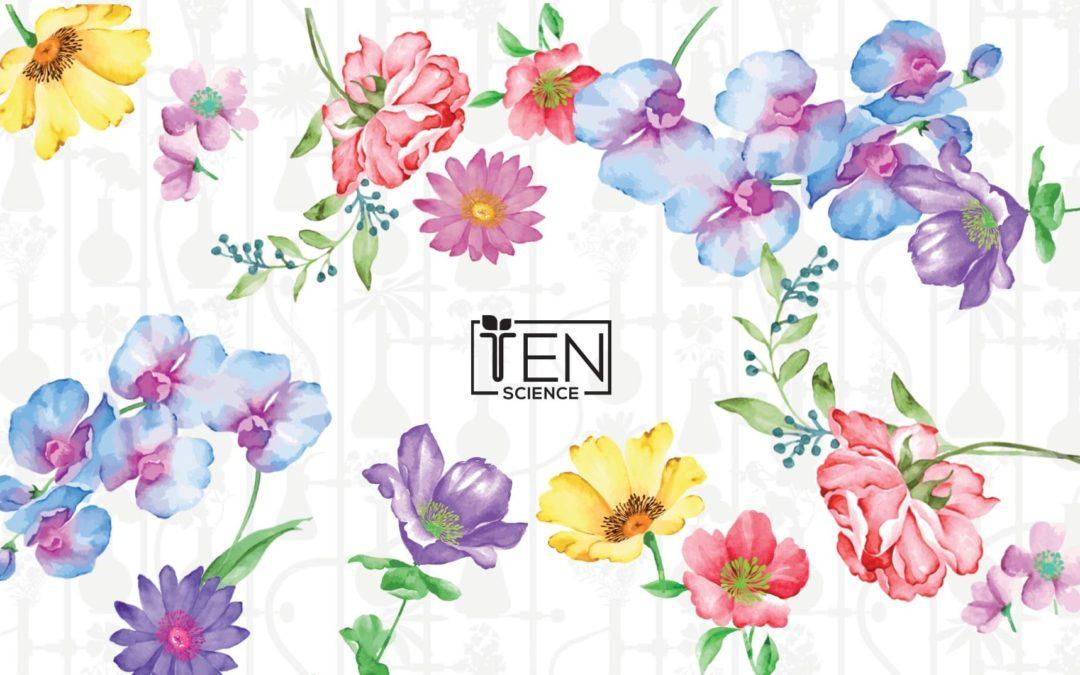 Prodotti di bellezza Ten Science: l'esperienza diretta di un'estetista
